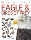 Image for Eagle & birds of prey