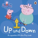Image for Up and down  : an opposites lift-the-flap book