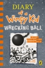 Image for Diary of a wimpy kid14