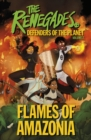 Image for Flames of Amazonia