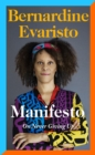 Image for Manifesto  : on never giving up