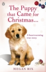 Image for The puppy that came for Christmas-- and stayed forever