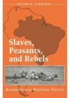Image for Slaves, Peasants, and Rebels : Reconsidering Brazilian Slavery