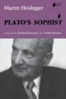 Image for Plato's Sophist