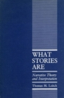 Image for What Stories Are : Narrative Theory and Interpretation