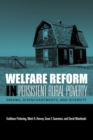 Image for Welfare Reform in Persistent Rural Poverty : Dreams, Disenchantments, and Diversity