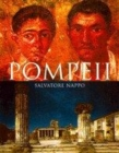 Image for Pompeii  : guide to the lost city