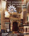 Image for The synagogues of Britain and Ireland  : an architectural and social history