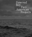 Image for Dawoud Bey - two American projects