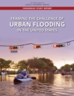 Image for Framing the Challenge of Urban Flooding in the United States