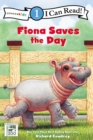Image for Fiona Saves the Day : Level 1