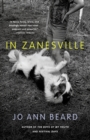 Image for In Zanesville  : a novel