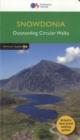 Image for Snowdonia  : outstanding circular walks