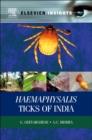 Image for Haemaphysalis Ticks of India