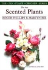 Image for The best scented plants