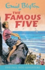 Image for Five fall into adventure