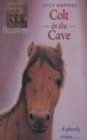 Image for Colt in the cave