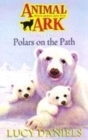 Image for Polars on the path