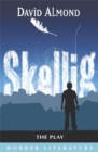 Image for Skellig : The Play