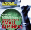 Image for Edexcel GCSE Business : Introduction to Small Business : Unit 1 : Teachers Resource