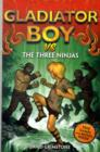 Image for Gladiator boy vs the three ninjas