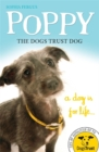 Image for Poppy, the Dogs Trust dog