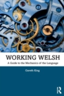 Image for Working Welsh  : a guide to the mechanics of the language