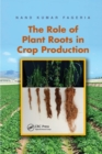 Image for The role of plant roots in crop production