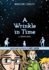 Image for Madeleine L'Engle's A wrinkle in time  : the graphic novel