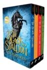 Image for The black stallion adventures
