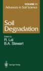 Image for Advances in Soil Science : Soil Degradation