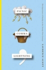 Image for Picnic Comma Lightning : The Experience of Reality in the Twenty-First Century