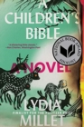 Image for A children's Bible  : a novel