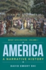 Image for America  : a narrative historyVolume 1