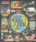 Image for The Wondrous Workings of Planet Earth : Understanding Our World and Its Ecosystems