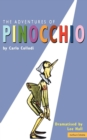 Image for The adventures of Pinocchio