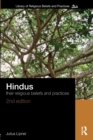 Image for Hindus  : their religious beliefs and practices