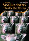 Image for From sea urchins to Dolly the sheep  : discovering cloning