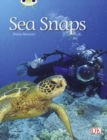 Image for Bug Club Independent Non Fiction Year 1 Green A Sea Snaps