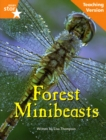 Image for Fantastic Forest orange Level Non-Fiction: Forest Minibeasts Teaching Version