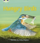 Image for Bug Club Phonics Non Fiction Year 1 Phase 5 Set 23 Hungry Birds