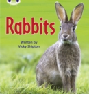 Image for Bug Club Phonics Non Fiction Year Two Phase 5 Set 27 Rabbits