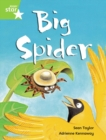 Image for Rigby Star Guided Phonic Opportunity Readers Green: Big Spider Pupil Book (Single)