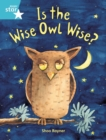 Image for Rigby Star Guided 2, Turquoise Level: Is the Wise Owl Wise? Pupil Book (single)