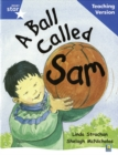 Image for Rigby Star Guided Reading Blue Level: A Ball Called Sam Teaching Version