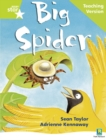 Image for Rigby Star Phonic Guided Reading Green Level: Big Spider Teaching Version