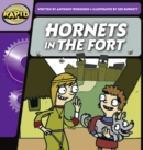 Image for Hornets in the fort