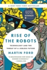 Image for Rise of the Robots : Technology and the Threat of a Jobless Future
