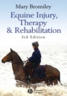 Image for Equine injury, therapy and rehabilitation