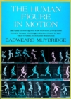 Image for The human figure in motion